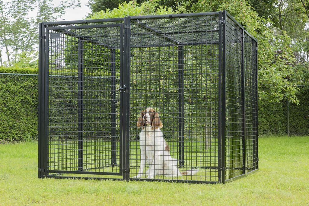 Hondenren vierkant zwarte panelen