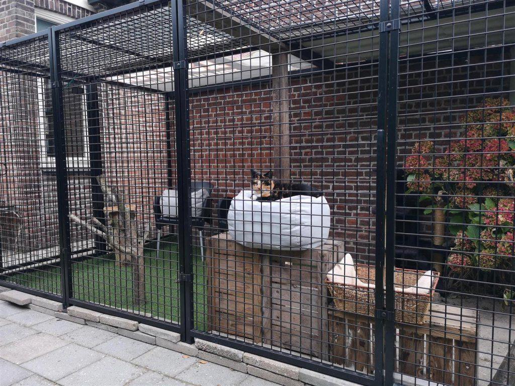 kattenren zelfbouw project